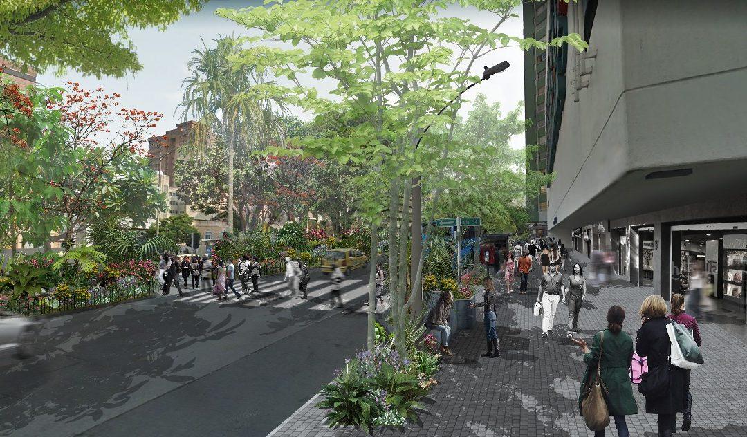 Es una realidad: La Avenida Oriental será reverdecida